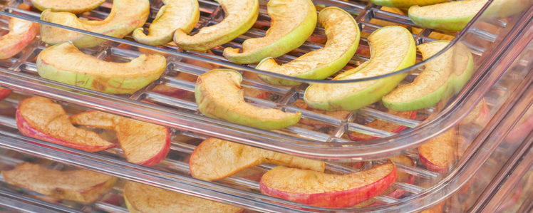 Dehydrator Snacks for Camping