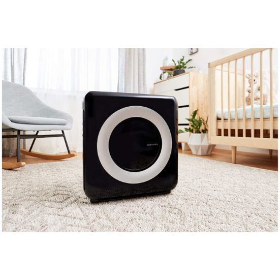 4. Best Portable: Coway Mighty Air Purifier